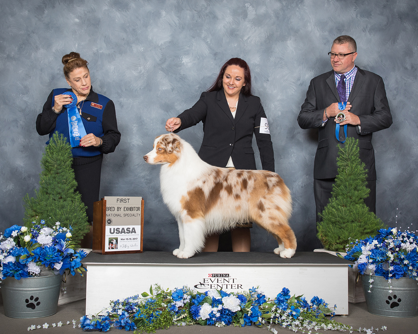 "ASCA CH/AKC GCH Stone Ridge Tough All Over ""Kaycei"""
